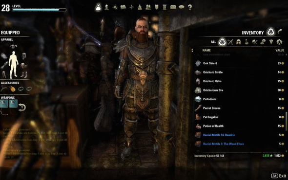 [TIPS]Wasted Space is Wasted ESO Gold – Inventory Management Basics
