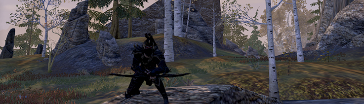 eso-gold-elder-scrolls-online-true-assassin